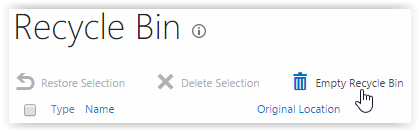 Screenshot of Recycle Bin page with Empty Recycle Bin selected