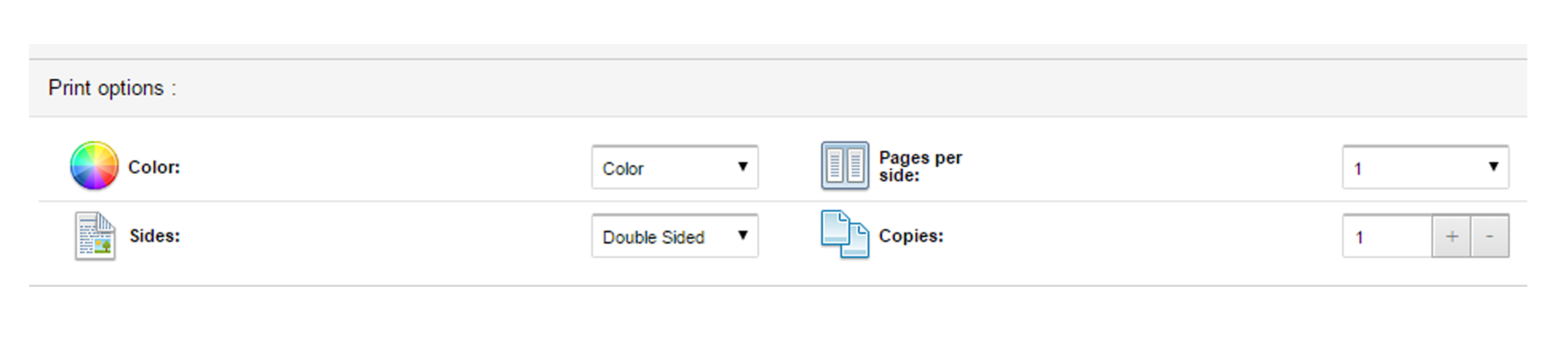 Print settings - including color and slide orientation.