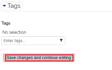 "the tags settings and ""save changes and continue editing"" button"